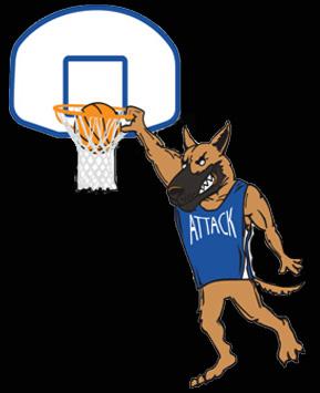 Basketball Playing German Shepherd